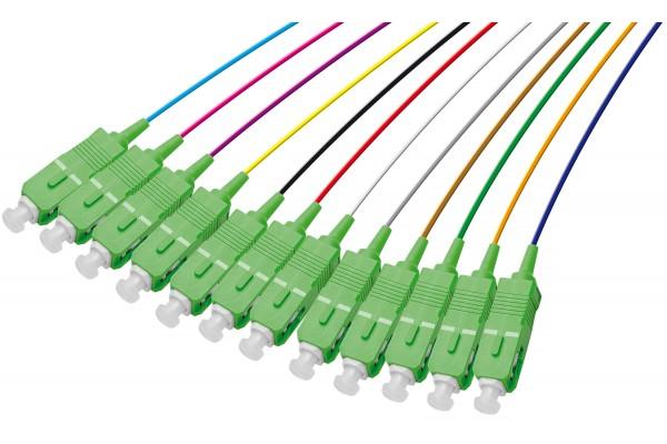 PIGTAIL OS1 SC/APC LSOH 12 CONNECTEURS – 1m